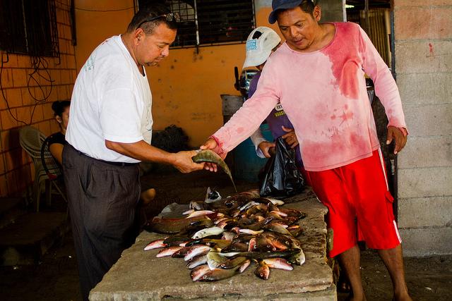 Ofilio Herrera (izquierda) compra un kilogramo de pescado recién capturado por Álvaro Eliseo Cruz, en las aguas  del océano Pacífico de Isla de Méndez, en Jiquilisco, en el oriente de El Salvador. Cruz obtuvo unos 15 kilogramos durante la jornada, entre pargos, mojarras y otras especies, que parte comercializa y parte deja para alimentar a su familia. Crédito: Edgardo Ayala/IPS
