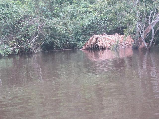 """Viviendas indígenas, prácticamente sumergidas por la inesperada crecida del río Xingu. Esas casas típicas del pueblo juruna, dan apoyo a la """"canoada"""", un evento turístico y político que los indígenas promueven cada septiembre, en el territorio de la Volta Grande, en el norteño y amazónico estado de Pará, en Brasil. Crédito: Mario Osava/IPS https://c1.staticflickr.com/3/2814/33560872601_bcff742326_o.jpg"""