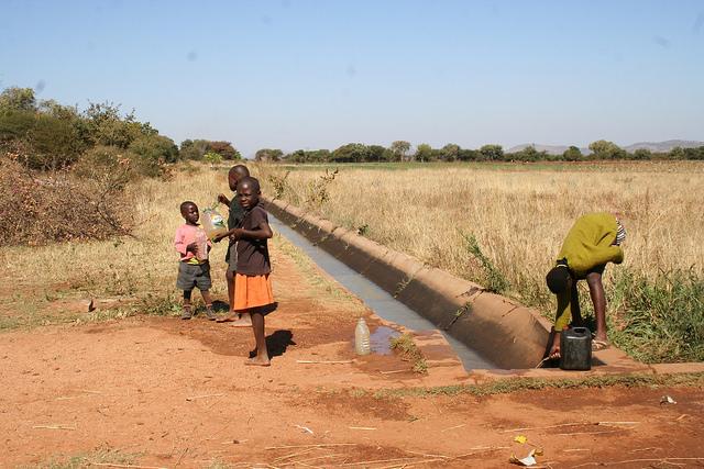 Niñas y niños recolectan agua de un canal en el sistema de irrigación de Magwe en el sur de Matabeleland, Zimbabwe. Crédito: Busani Bafana/IPS.