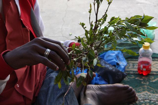 Un hombre en Somalilandia corta las hojas de una rama de qat en Hargeisa, la capital de ese país no reconocido internacionalmente. Crédito: James Jeffrey/IPS.