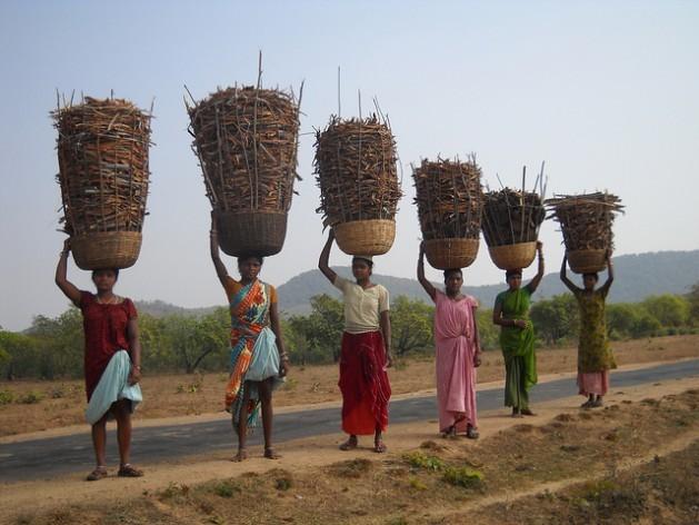 Mujeres regresan del bosque con canastas llenas de corteza de árbol, que recogieron con mucho trabajo, y estiércol seco. La comunidad bhumia practica una silvicultura sostenible. Crédito: Manipadma Jena/IPS.