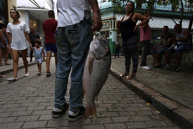 Un vendedor exhibe un pescado en la calle Obispo, en el centro histórico de La Habana Vieja. El comercio informal palia la muy insatisfecha demanda de pescado en Cuba, donde el consumo anual por persona apenas alcanza los 3,2 kilógramos. Crédito: Jorge Luis Baños/IPS