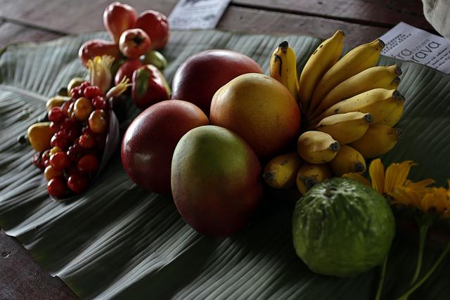 """Muestra de frutas cultivadas en Tierra Brava, una finca situada en Los Palacios, en la occidental provincia de Pinar del Río, en Cuba. En la cooperativa de la que forma parte, los productores aspiran a construir una planta procesadora para vender a los turistas """"fruta sana"""". Crédito: Jorge Luis Baños/IPS"""