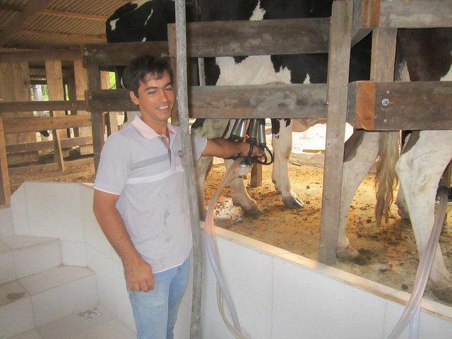 Alison Oliveira ordeña una de sus vacas, que se alimentan en un pastizal con irrigación nocturna, lo que abarata la energía en 60 por ciento. Eso, el huerto orgánico y el sistema agroforestal hacen de su finca un ejemplo de sostenibilidad que atrae a muchos visitantes hacia su explotación, en el comienzo de la Amazonia brasileña. Crédito: Mario Osava/IPS