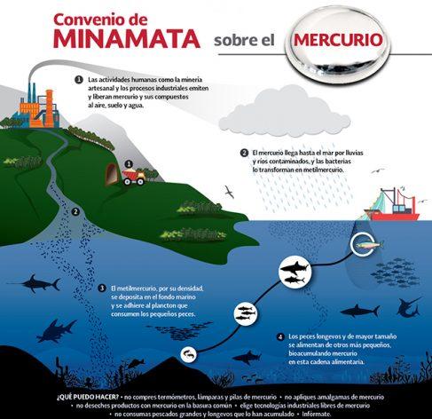 El Convenio de Minamata sobre el Mercurio entró en vigor el 16 agosto y obliga al control en el mundo del metal cuya emisión es gravemente tóxica para los humanos y otros seres vivos del planeta. Crédito: INECC