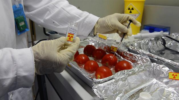 Las ciencias nucleares colaboran con la seguridad alimentaria. Crédito: FAO