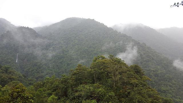El Parque Nacional Tapantí, al este de San José de Costa Rica, cubre más de 50.000 hectáreas de bosque. Este país es el único de América Central que incrementó su capa forestal en los últimos 15 años. Crédito: Diego Arguedas Ortiz/IPS