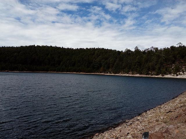 Orilla del embalse de la presa La Rosilla 2, a cargo del ejido La Victoria, en el norteño estado mexicano de Durango, y en cuyos márgenes se conservan 30 hectáreas de bosque. Las comunidades forestales y los ejidos de la región han recuperado cuencas y otras áreas degradadas. Crédito: Emilio Godoy/IPS