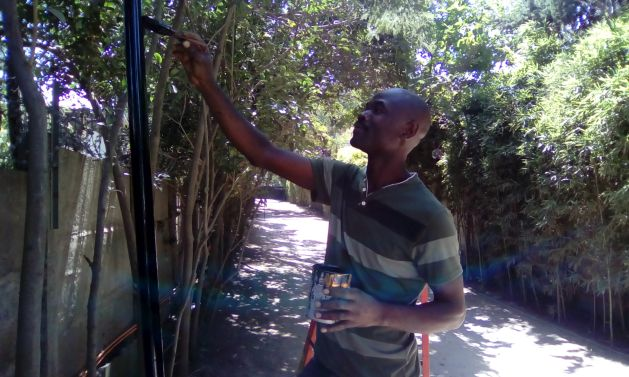 El pintor y electricista Salomón Henry vive desde hace tres años en Santiago de Chile con su familia. Tiene residencia por cinco años, gracias a un contrato de trabajo en un exclusivo condominio, donde reinstaló la red eléctrica entre otras tareas. En 2014 los migrantes haitianos no llegaban a los 1.800 y en abril de este año bordeaban los 120.000 según cifras oficiales. Crédito: Orlando Milesi/IPS