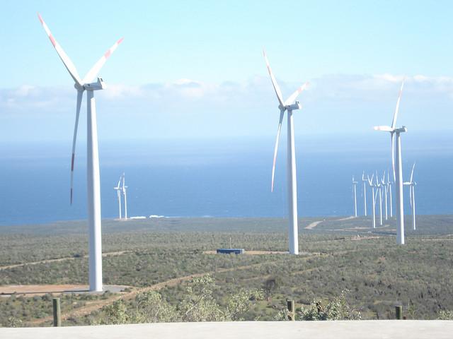 El Parque Eólico Canela, con aerogeneradores de 112 metros de altura y una capacidad instalada de 18,15 megavatios, genera electricidad con la fuerza de los vientos frente al mar, en la región de Coquimbo, en el norte de Chile. Crédito: Orlando Milesi/IPS