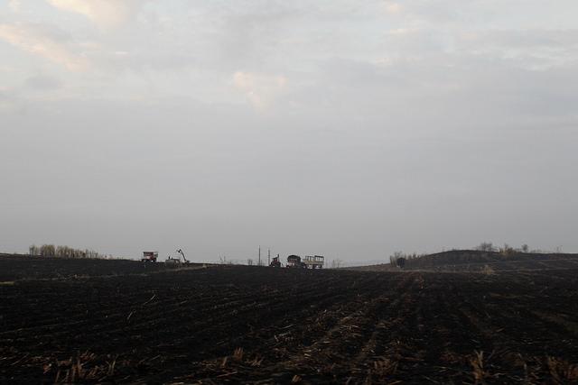Una plantación de caña de azúcar después quedar arrasada por un incendio ocasionado por las altas temperaturas en el municipio de Palma Soriano, en la oriental provincia de Santiago de Cuba. Crédito: Jorge Luis Baños/IPS