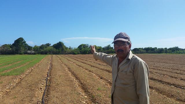 El trabajador agrícola Abigail Castro señala donde queda el mar, que escolta la finca La Fortuna, en el municipio de San Antonio del Sur, en la provincia de Guantánamo, en el este de Cuba, única en el mundo por sus características. Crédito: Ivet González/IPS