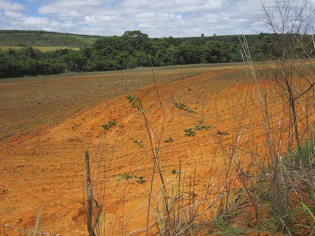 Una terraza excavada en medio de un terreno dedicado a la siembra, con el fin de retener el agua y evitar la erosión que arrastra el suelo y sus nutrientes a los cursos de agua, debilitándolos. Esa es una de las técnicas difundidas por el Programa Productor de Agua que ya diseminó 60 proyectos en Brasil, como este en las cercanías de su capital. Crédito: Mario Osava/IPS