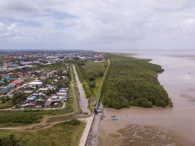 Vista aérea del bosque de manglares a lo largo de la costa de manglares. Alrededor de 90 por ciento de la población de Guyana viven en una estrecha franja costera que está entre medio metro y un metro por debajo del nivel del mar. Crédito: Cortesía del ministerio de Presidencia/OCC/Kojo McPherson