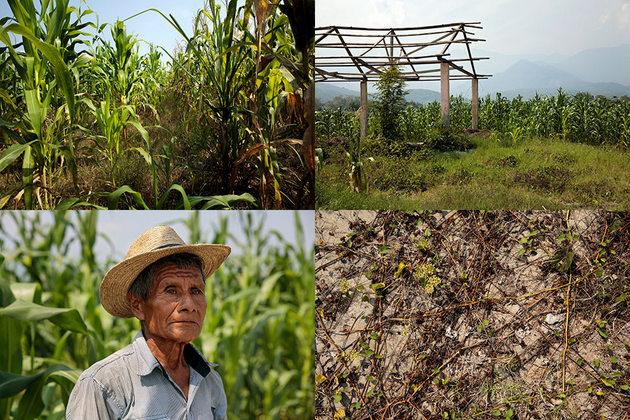 Don Pablo, un campesino local, ayudó a identificar la fosa común en la granja Tinajas, donde tuvo lugar la matanza de civiles por parte de militares en la década de 1980. En 2012 se exhumaron los restos de 51 cuerpos en el sitio. Crédito: Ryan Brown/ONU Mujeres
