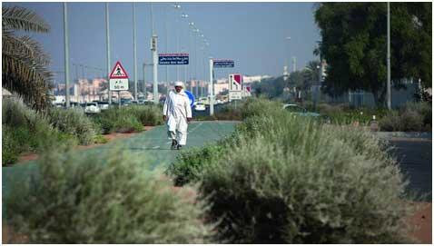 El uso de solo especies autóctonas para el paisajismo es una de las recomendaciones para Dubái de los expertos en sostenibilidad eficiencia energética. Crédito: Cortesía de Silvia Razgova