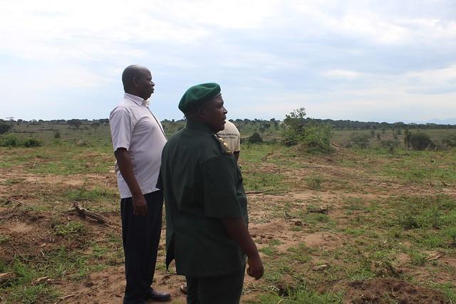 Funcionarios de la Autoridad de la Vida Silvestre de Uganda, en una de las áreas del Parque Nacional Queen Elizabeth donde se ha logrado erradicar el espinoso arbusto de la hoz, dentro del plan de restauración de la mayor y más biodiversa área protegida del país y una de las mayores de África. Su fauna ha sufrido y sufre los embates de la invasión de una planta que la expulsa de sus hábitats tradicionales. Crédito: Wambi Michael/IPS