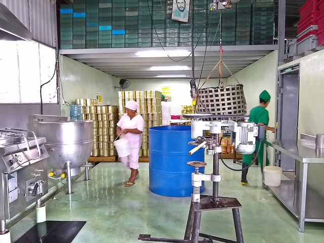 El equipamiento de La Ignacita, una pequeña industria procesadora de frutas y hortalizas de la periferia de La Habana, lo aportó el Proyecto de Apoyo a una Agricultura Sostenible en Cuba (PAAS), que busca cerrar ciclos productivos y certificar fincas y productos ecológicos en varios municipios de Cuba. Crédito: Ivet González/IPS