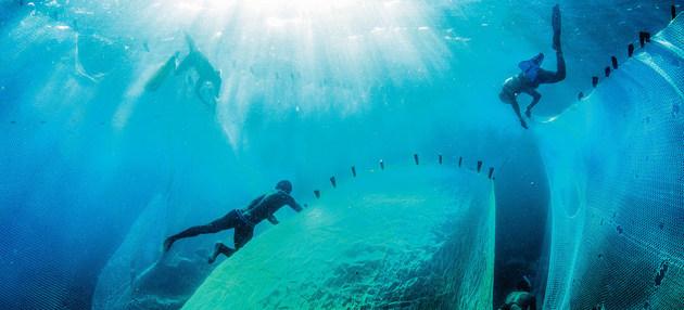 Pescadores en Magadascar. Crédito: Garth Cripps/PNUD