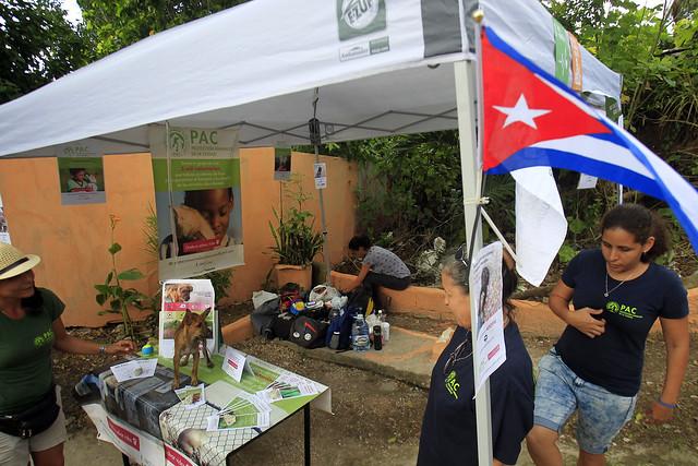 Activistas del proyecto Protección Animales de Ciudad participan de la segunda edición del Festival de Arte e Innovación Social, celebrado el 31 de agosto en el barrio de Los Pocitos de La Habana, en Cuba. Crédito: Jorge Luis Baños/IPS