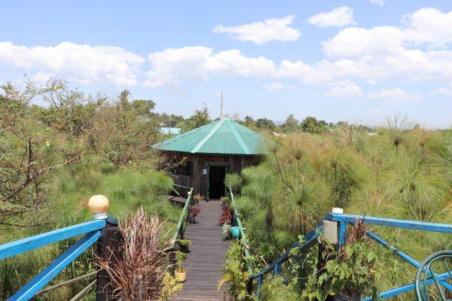 Al fondo de la pasarela sobre el humedal de la playa de Dunga, en el lago Victoria, en Kenia, el pequeño museo que exhibe productos y artesanías tradicionales, elaboradas por mujeres de la zona, que vienen a visitar estudiantes provenientes de todo el país. Foto: Isaiah Esipisu / IPS