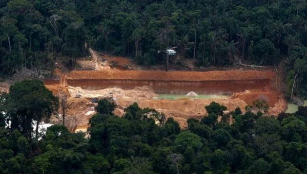 Brasil perdió 1 361 000 hectáreas de bosques primarios en un año, la mayor pérdida del mundo. Foto: Cortesía de Gustavo Faleiros/Infoamazonia