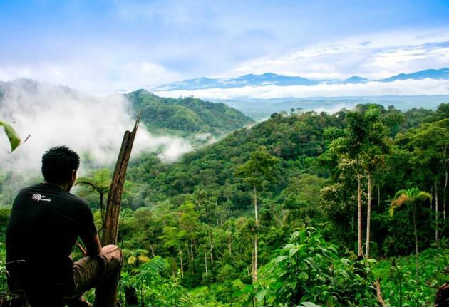 Lo que se hace en la Amazonia, para bien o para mal, tiene consecuencias en todo el planeta. Foto: Servicio Forestal y de Fauna Silvestre de Perú