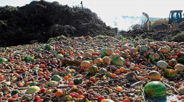 La pérdida y el desperdicio de alimentos implican despilfarro de recursos, menos posibilidades de reducir el hambre y un mayor impacto ecológico sobre el planeta. La FAO lanzó una plataforma con datos para ayudar a tomar decisiones e iniciativas que reduzcan ese daño. Foto FAO