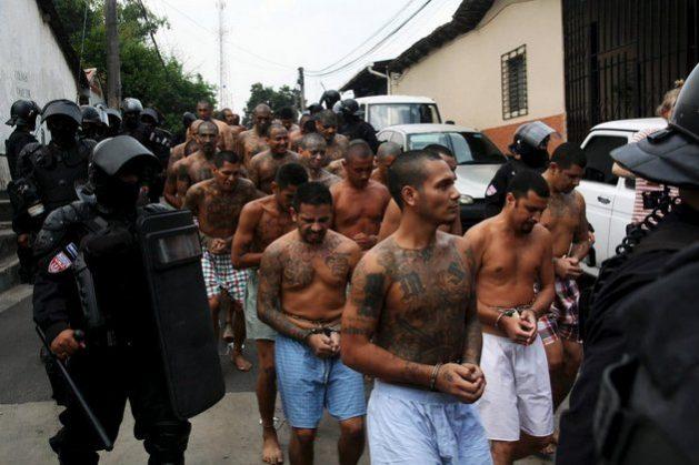 Miembros de la pandilla Maratrucha de El Salvador, son conducidos por la policía a una cárcel tras ser capturados. Foto: Crisis Group