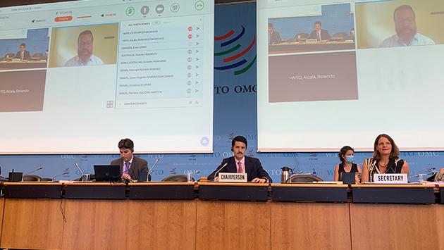 Miembros de la OMC a fines de junio, durante una sesión preparatoria, con participación presencial y virtual, sobre la 12 Conferencia Mundial del organismo, que como efecto de la pandemia quedó postergada para 2021 postergando el abordaje de su honda crisis. Foto: OMC