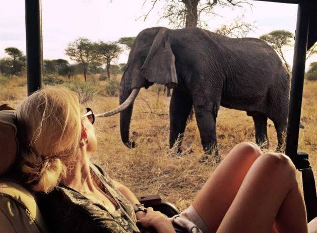 El turismo ayuda a financiar la conservación de hábitats de vida silvestre y representa un modo de vida y de ingresos para millones de personas en regiones como el sur y oriente de África. Foto: Enkosi África