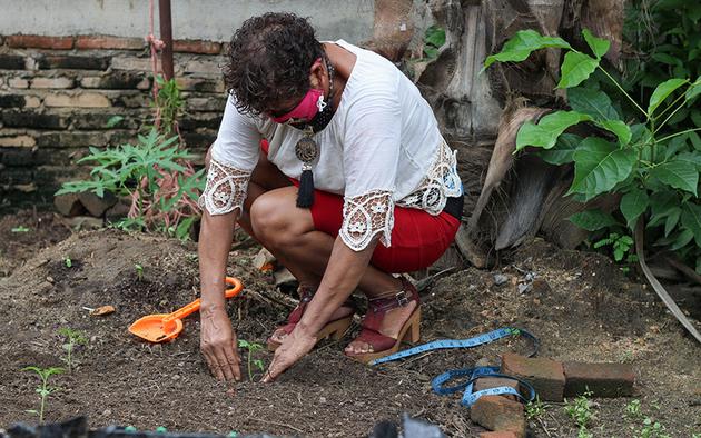 Encelmini Rodríguez, sembrando cilantro en su huerto orgánico, ubicado en el patio de su casa. Foto: Franyeli García/Amapola