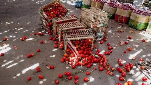 Controlar la perdida y desperdicio de alimentos es un factor crucial para alcanzar la meta de erradicar el hambre en el mundo. Foto: FAO