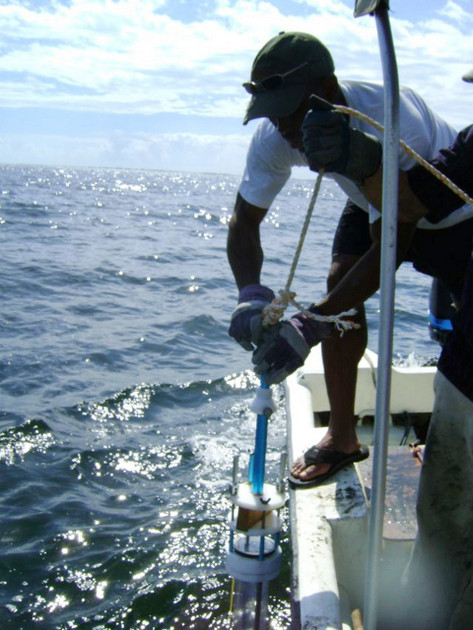 Recolección de muestra de sedimentos mediante un nucleador de gravedad en el Puerto de Kingston, Jamaica. Foto: Cortesía de Sheries Simpson