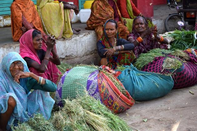 Mujeres dalits venden hierba al borde de la carretera cerca de Yamuna Nagar, en Haryana, en el norte de India. Según el último censo agrícola, 85 por ciento de los dalits de este estado no posee tierras. Foto: Stella Paul / IPS