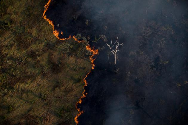 Un incendio en un bosque amazónico brasileño, en la frontera con Bolivia. La devastación por los incendios crece en Brasil y otros países amazónicos y es un factor que contribuye a la crisis climática, una prioridad anunciada por el presidente electo estadounidense, Joe Biden. Foto: Bruno Kelly/Amazônia Real-Fotos Públicas