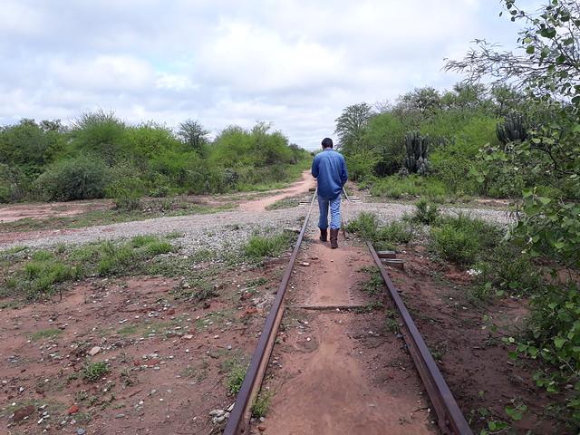 Un hombre camina por una vieja y abandonada vía ferroviaria en una zona rural del Chaco argentino donde la mayor parte del bosque nativo ha sido desmontado. En esta región se concentra el grueso de las casi 180 000 hectáreas de bosque que, según datos oficiales, se pierden cada año en Argentina. Foto: Daniel Gutman /IPS