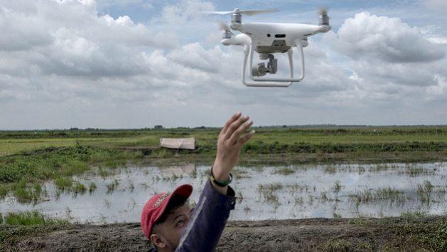 Expertos en agricultura de Filipinas, uno de los países en desarrollo que mejor aplica tecnologías de vanguardia, según la Unctad, utilizan drones para recopilar datos visuales sobre cultivos de arroz en la zona de Pampanga, al centro de la isla de Luzón. Foto: Veejay Villafranca/FAO
