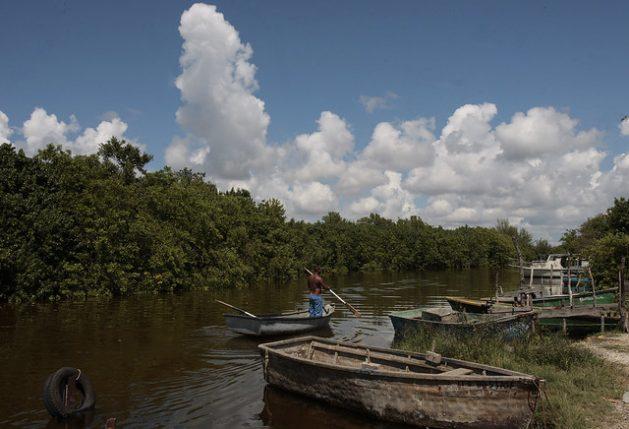 Manglares ubicados en las orillas del río Mayabeque, en el municipio de Batabanó, en la costa sur de la occidental provincia de Mayabeque: El nuevo proyecto Mi Costa prevé fortalecer la protección de humedales, manglares, arrecifes y pastos marinos en dos tramos con una extensión de más de 1300 kilómetros de la costa meridional de la isla de Cuba. Foto: Jorge Luis Baños/IPS