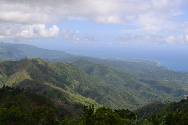 Las Montañas Azules de Jamaica y la cordillera John Crow -con el Caribe al fondo- contienen el único bosque tropical de la isla y son fuente del agua que se consume en Kingston, la capital, por lo que su conservación es fundamental. Foto: BID