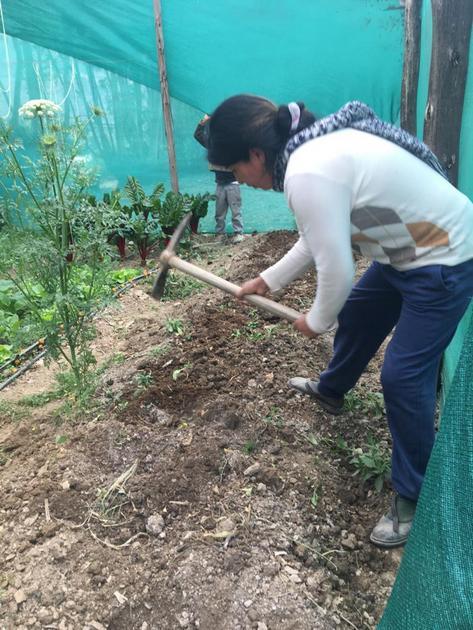 Maribel Palomino realiza el doble excavado del suelo para asegurar el mejor rendimiento de sus hortalizas, en el biohuerto que estableció en la pequeña finca familiar en la región altoandina de Cusco, en Perú, a la que regresó tras comenzar la cuarentena para contener la covid. Ahora ya sueña con aliarse con otras mujeres de la zona para comerciar sus productos en forma colectiva. Foto: Cortesía de Maribel Palomino
