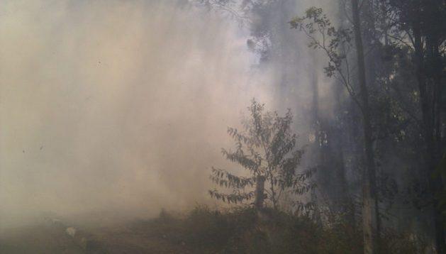 En los últimos años hubo incendios graves en Bolivia, Paraguay y sobre todo Brasil, que aloja 29 por ciento de los bosques tropicales del mundo. Foto: Mark Hillary/Flickr - Creative Commons 2.0