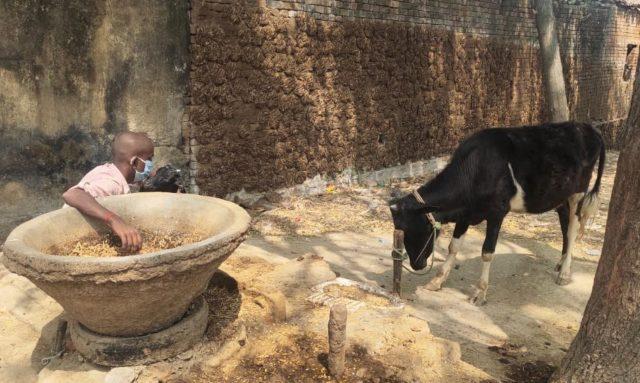Un superviviente de trata de niños. Los traficantes han estado manipulando a familias vulnerables en áreas rurales mediante parientes o mencionando a un familiar para ganarse su confianza. Crédito: Neena Bhandari/IPS