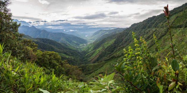 Colinas de los Andes en Colombia, donde ocurre la mayor proporción de ataques a defensores ambientales. Foto: Alamy