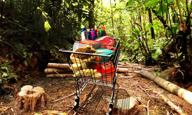 El consumo de muchos productos presentes en el conocidísimo carrito de compras está al final de una cadena de comercialización iniciada con la deforestación de un área de bosque tropical, destaca el Fondo Mundial para la Naturaleza. Collage: WWF
